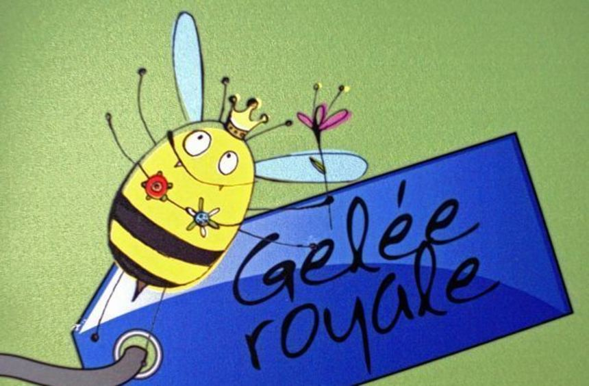 """Die Ausstellung """"Faszination Bienen - glasklar und stockdunkel"""" wird am Freitag, 13. März, um 16 ..."""