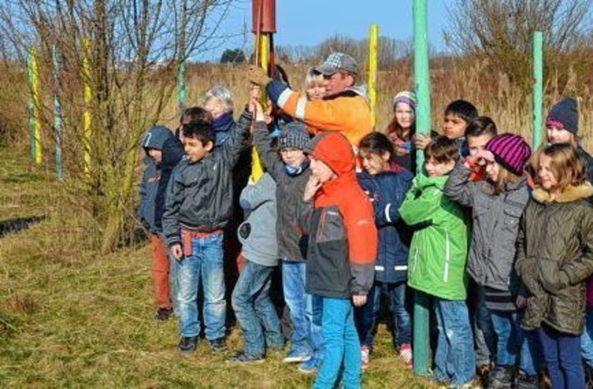 Von Schülern buntbemalte Holzpfähle markieren den einstigen Verlauf des Neckars.