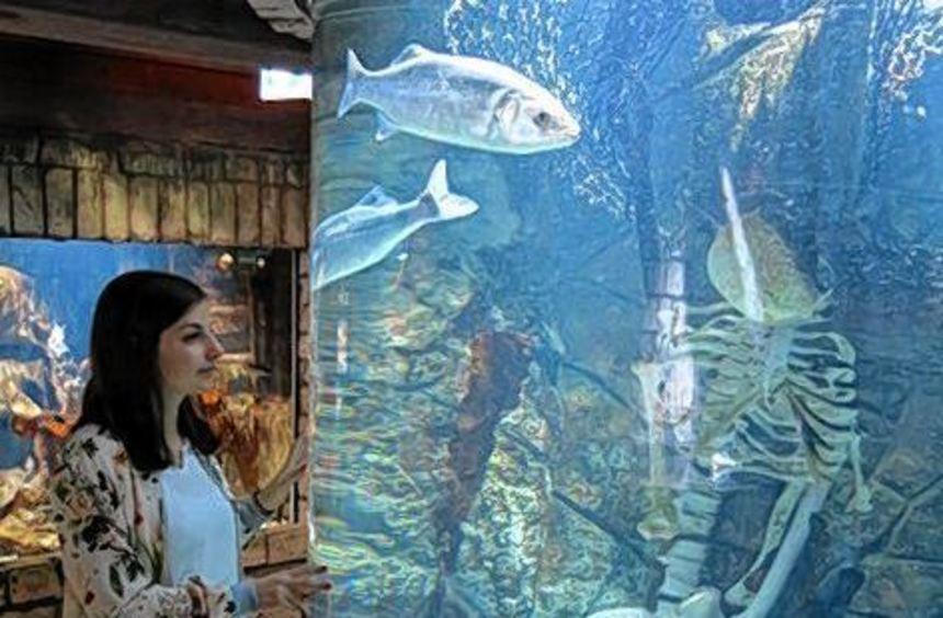 Unsere Mitarbeiterin Jana vor einem der Aquarien im Sealife Speyer.