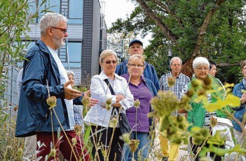 Noch bis zum 13. September ist die Gartenschau in Mühlacker geöffnet. Zu sehen gibt es neben bunten ...