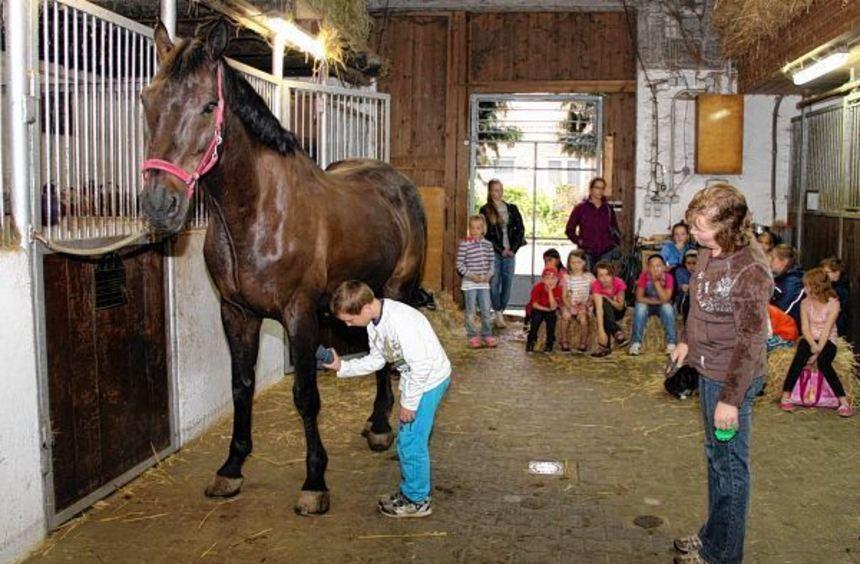Birgit Helfrich zeigt den Kindern, wie man ein Pferd striegelt.