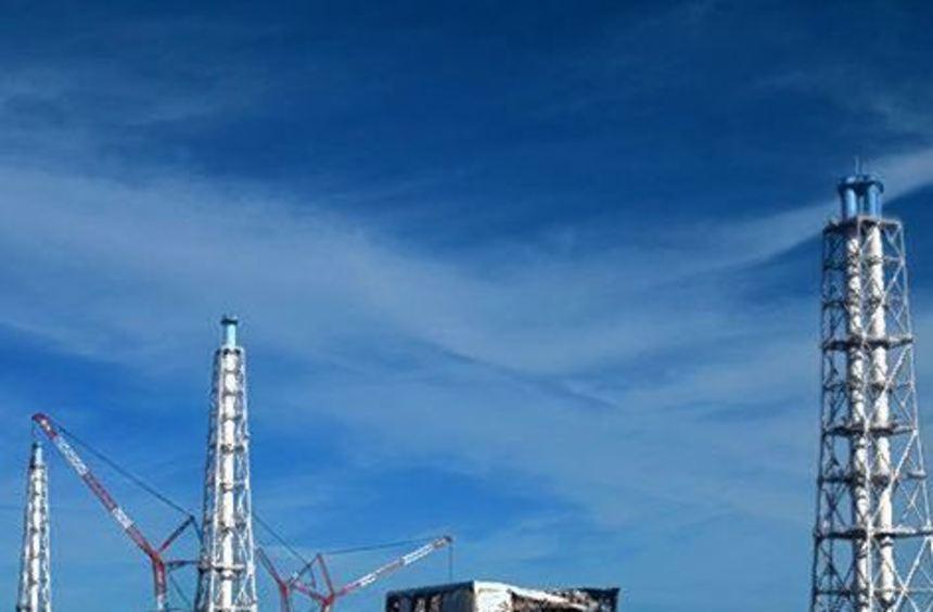 Das AKW Fukushima. Vielen Tannen in der Nähe fehlt die Stammknospe.