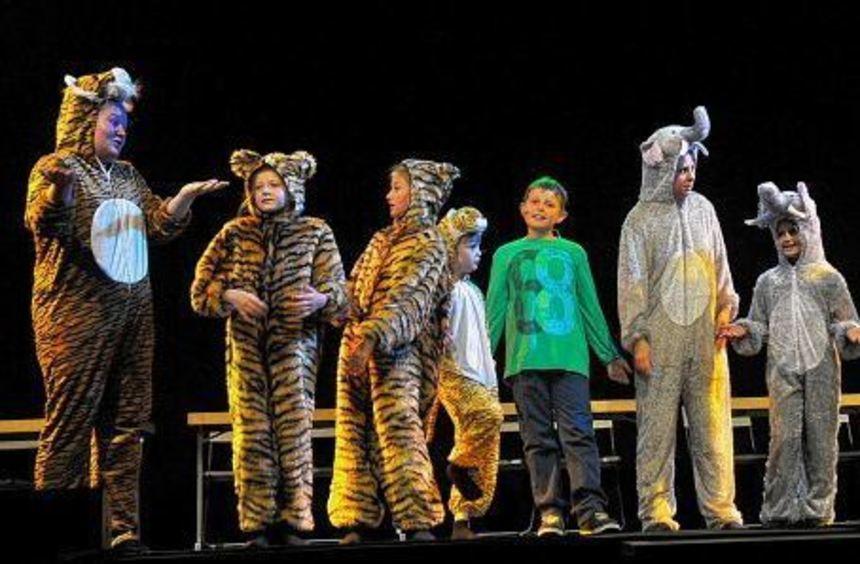 """Das Musical """"Professor Finbar und die Mondzaubernacht"""" von Michel Suljic wird bald in Madrid ..."""