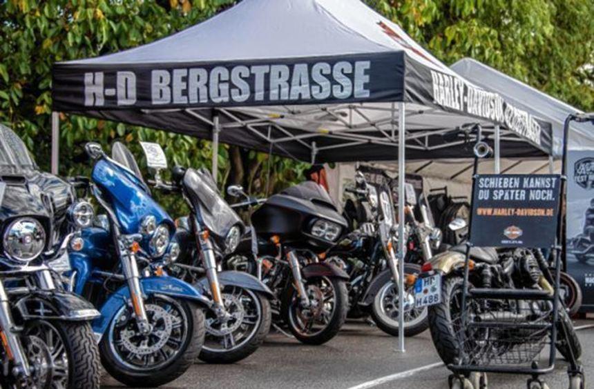 Regionale Händler präsentierten auf dem ADAC-Übungsplatz in Bensheim rund 400 Fahrzeuge. Darunter ...