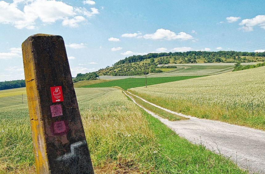 Der Panoramawanderweg Taubertal steht in diesem Jahr zur Überprüfung an. Unser Bild zeigt den Blick ...
