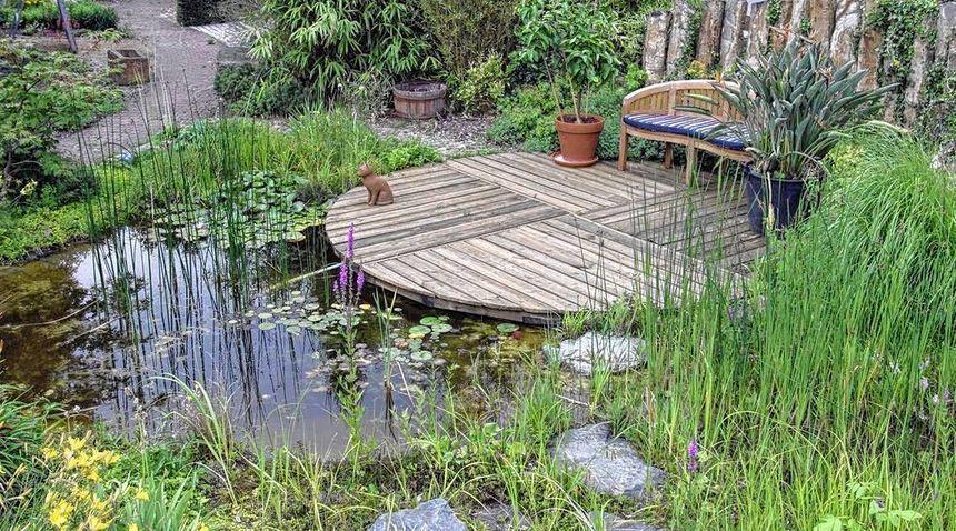 Mit spaten und folie gartenteich selber bauen mannheimer morgen mannheimer morgen - Gartenteich selber bauen ...