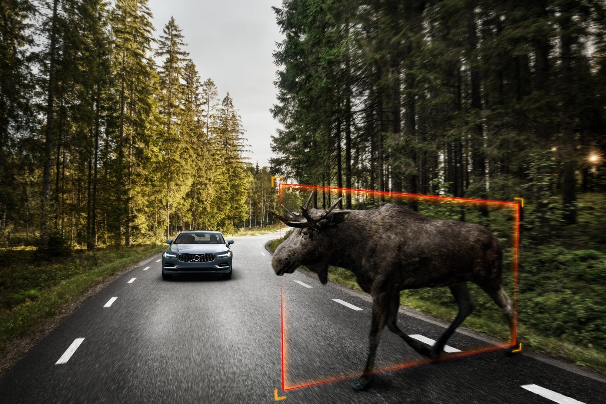 mid Groß-Gerau - Im neuen S90 bringt Volvo erstmalig einen speziellen Assistenten zur Erkennung großer Tiere zum Einsatz.