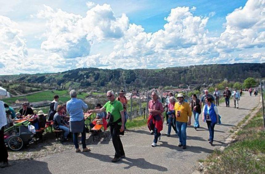 Die Laudenbacher Weinerlebniswanderung findet am Sonntag, 24. April, statt. Sie verknüpft ...