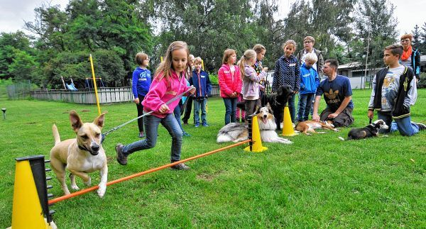 Kinder von sechs bis 14 Jahren lernten bei den Ferienspielen des Vereins der Hundefreunde die elementaren Regeln für den richtigen Umgang mit den Vierbeinern kennen.