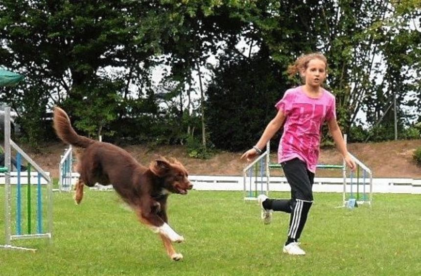 Beim Agility-Turnier der Lautertaler Hundefreunde zeigten die Teams des gastgebenden Vereins ...