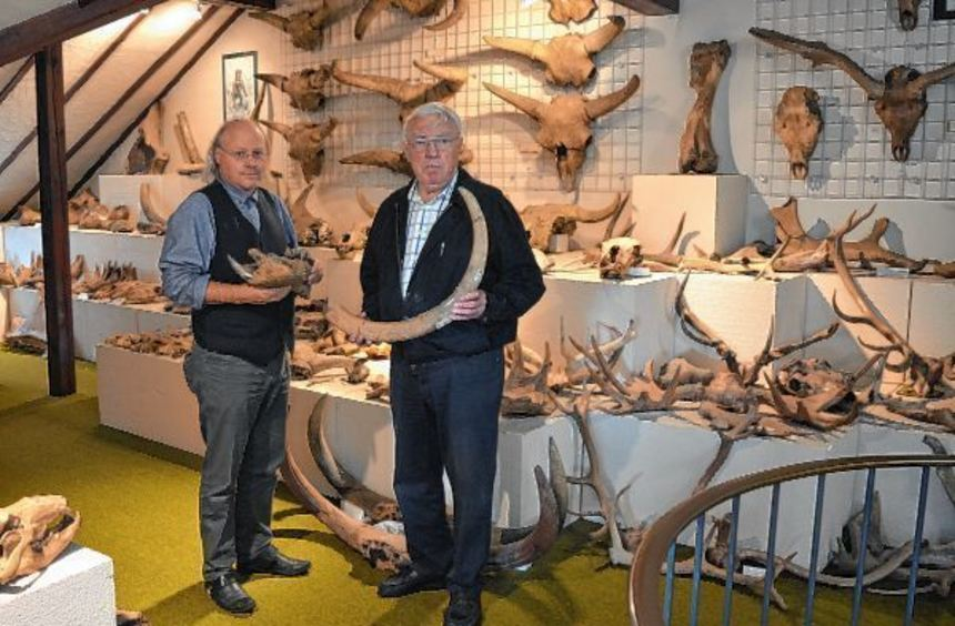 """""""Exzellente Stücke"""", dankt Museumsdirektor Wilfried Rosendahl (l., mit Nilpferd-Unterkiefer) dem ..."""