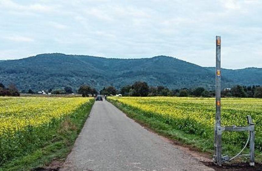 Das Handschuhsheimer Feld wird für den Autoverkehr gesperrt.