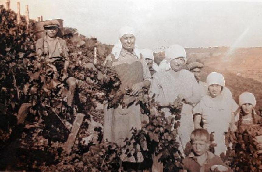 Einst bewirtschafteten zahlreiche Winzer in Hardheim bis zu 120 Hektar Weinanbaufläche. Seit der ...