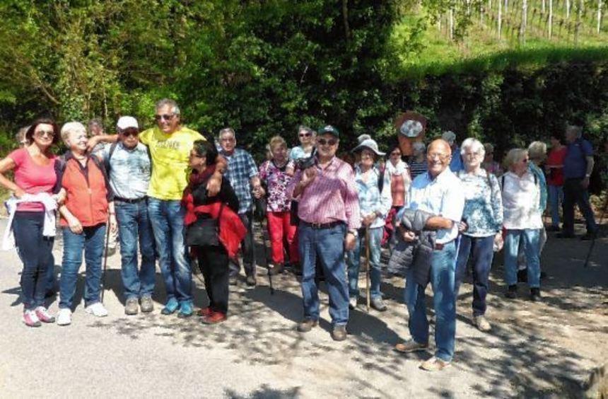 Die Wanderabteilung im TSV Elmshausen unternahm eine Tour in Bensheim.