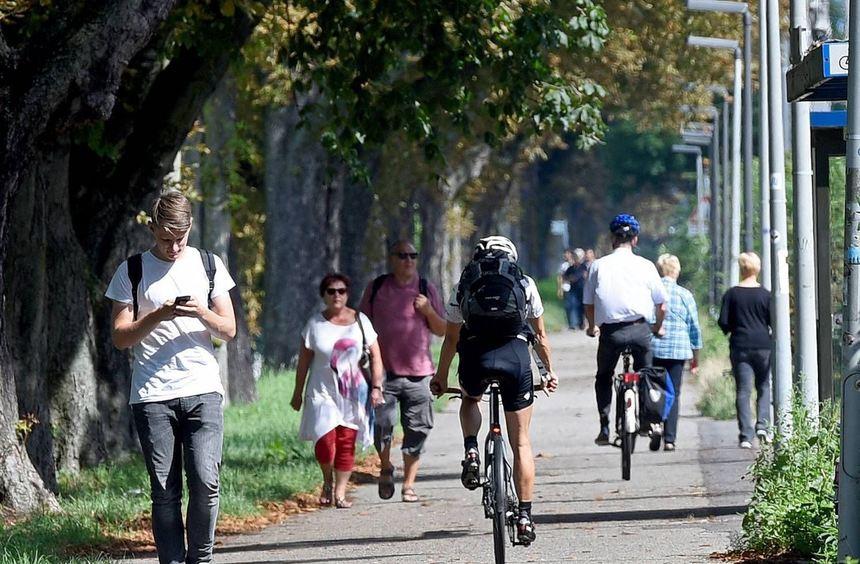Probleme auf dem Neckardamm: Für Radfahrer, Fußgänger und Jogger wird es manchmal ganz schön eng. ...