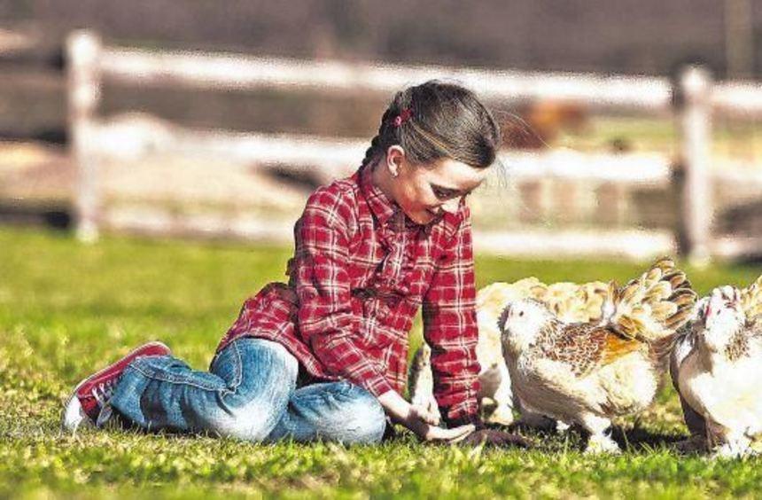 Hühner bringen ein Stück Landleben in den eigenen Garten. Und für Kinder ist es ein besonderes ...