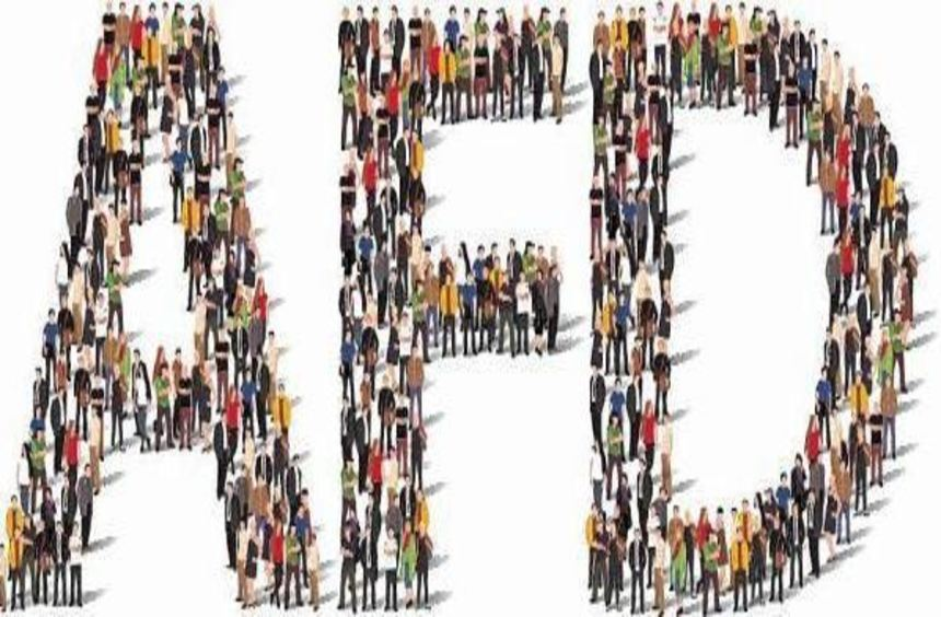 Keine AfD ohne Anhängerschaft - die findet sich vor allem im Netz.
