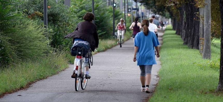 Probleme auf dem Neckardamm: Für Radfahrer, Fußgänger und Jogger wird es manchmal eng. Im Stadtteil ...