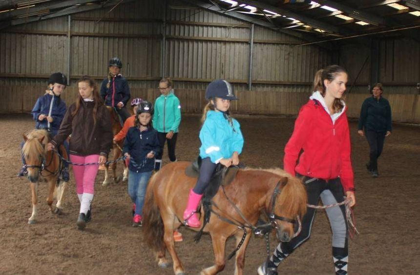 Auf den Ponys dürfen die Teilnehmer des Ferienspiels beim Reitverein Heddesheim durch die große ...
