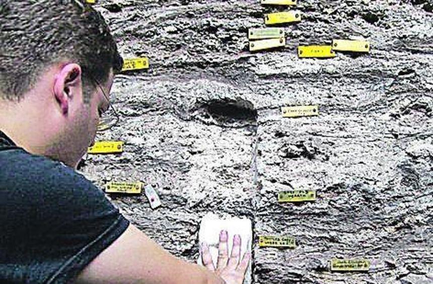 Der Tübinger Forscher Christopher Miller untersucht die Fundstelle.