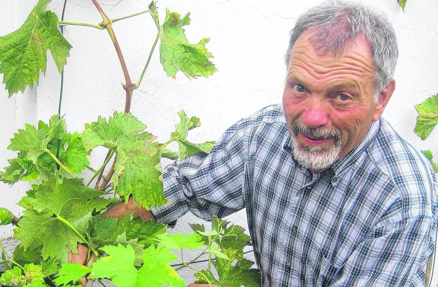 Dieter Oster hat in Reichenbach schon eine gute Ernte eingefahren.