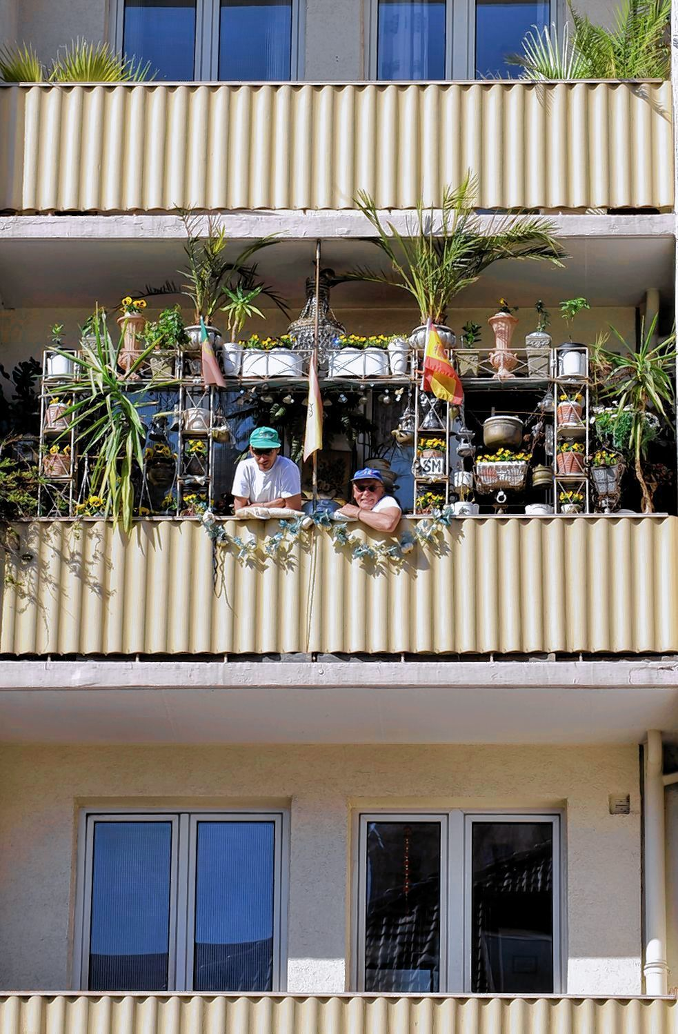 mieter hat kein recht auf blumenk sten immomorgen mannheim stadt mannheim morgenweb. Black Bedroom Furniture Sets. Home Design Ideas