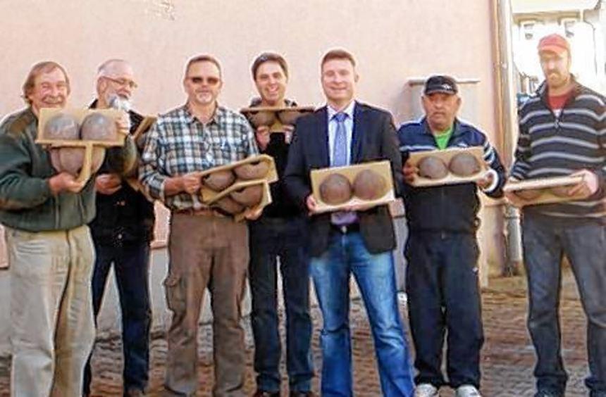 Mit künstlichen Nisthilfen soll den Mehlschwalben gehofen werden.