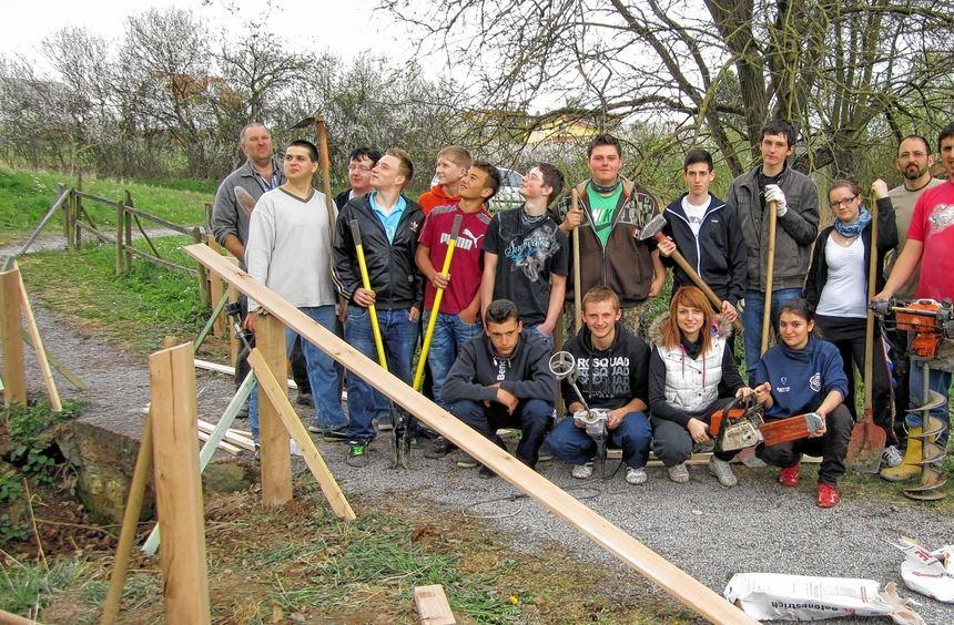 15 Schüler der Auerberg-Werkrealschule Walldürn sammelten beim Arbeitseinsatz im Gottersdorfer ...