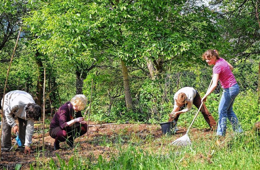 """Mitglieder des Arbeitskreises """"Ökologisch Welt fairändern"""" der ESG Würzburg erforschen neben dem ..."""