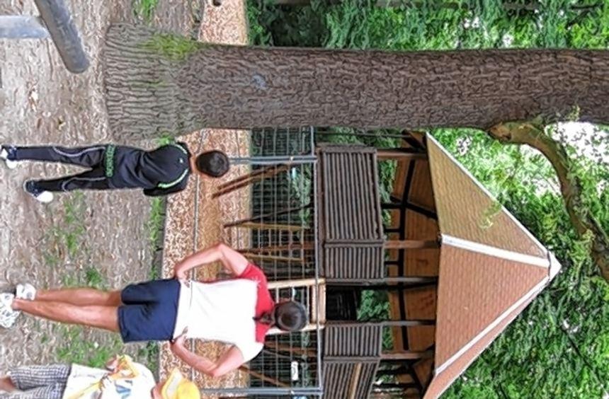 Aus Sicherheitsgründen bliebt das Baumhaus gesperrt.