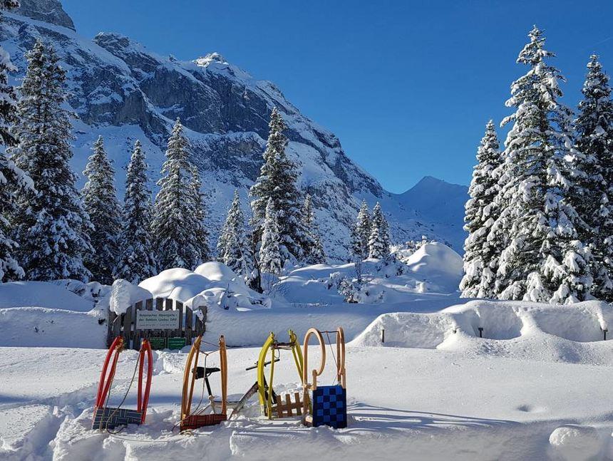 Mit Kaiserwetter wurden die Skifahrer der TSV Auerbach belohnt.