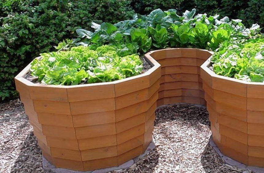 Zur Konstruktion der Hochbeetwände kommen Holz, Kunststoff, Stein oder Metall in Frage.
