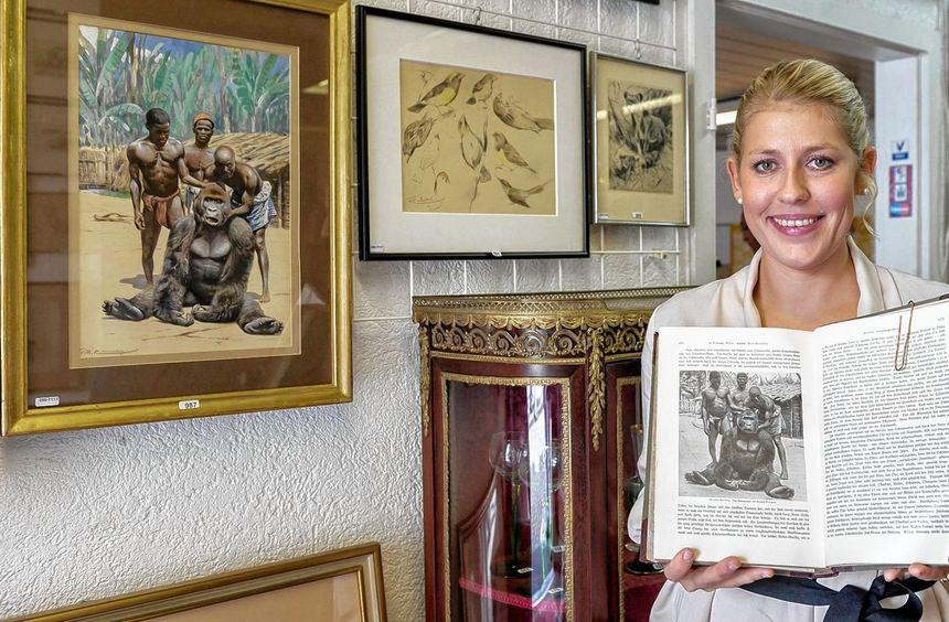 Lena Berkler präsentiert mit Wilhelm Kuhnerts Gorilla-Gemälde - das in Brehms Tierleben abgedruckt ...