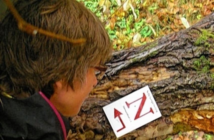 Ein rotes N kennzeichnet den 124 Kilometer langen Nibelungensteig.