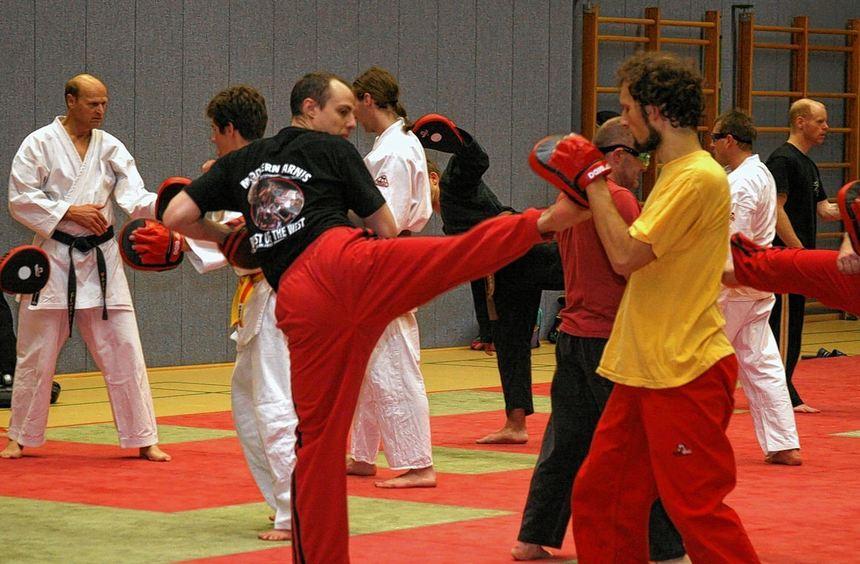 Rund 30 Judoka machten beim Workshop in Bürstadt mit. Ausrichter war der 1. Judo Club. Die ...