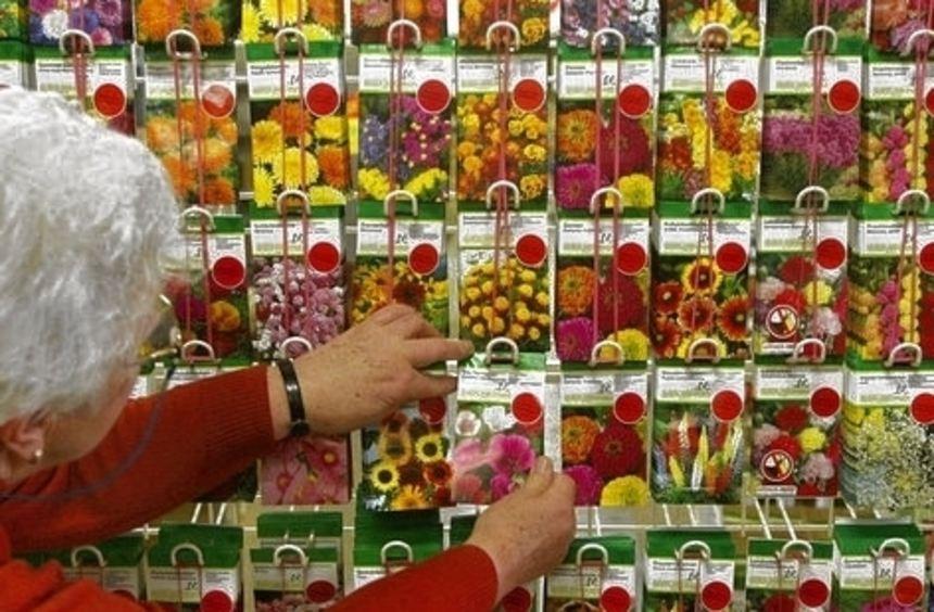 Gewerbliche Händler müssen Saatgut künftig zertifizieren lassen.