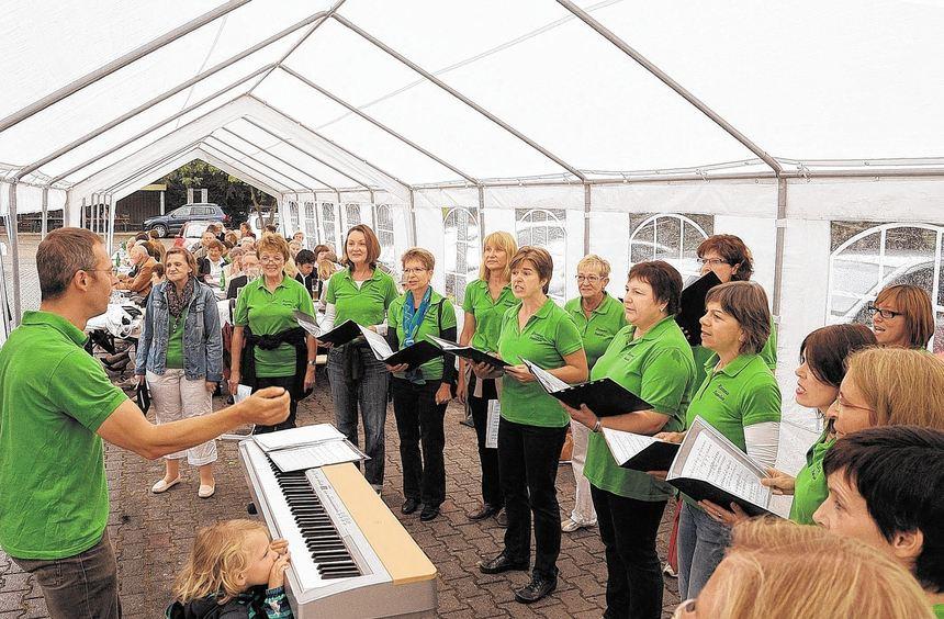 Auch der Frauenchor New Harmonists mit Dirigent Tobias Freidhof sorgte beim Sommerfest im Haus der ...