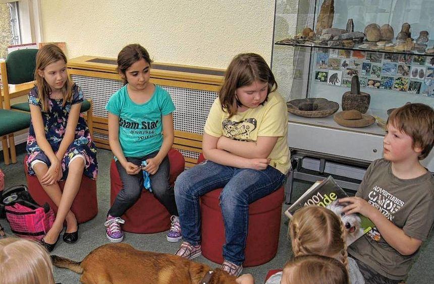 """Lesehund Urs hörte beim letzten """"Lesen im kleinen Dreieck"""" gerne zu."""