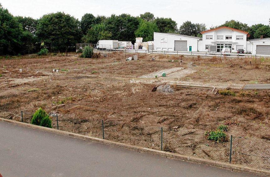 Zwischen Sackstein- und Steinlachstraße sollen bald zwölf Häuser entstehen. Das Gelände liegt schon ...