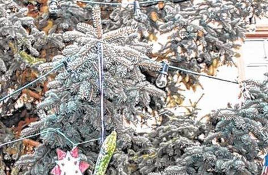 eine gurke am weihnachtsbaum bergstr er anzeiger. Black Bedroom Furniture Sets. Home Design Ideas