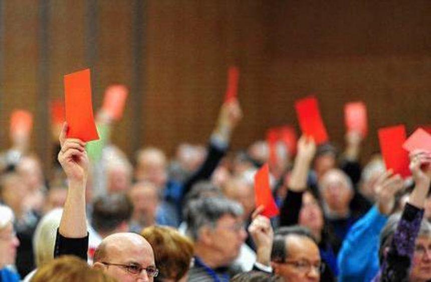 Mitglieder auf dem AfD-Parteitag am Wochenende in Gießen.