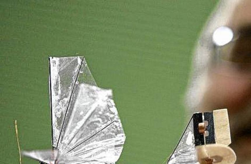 Nur durch die Bewegung der Tragflächen fliegt der Ornithopter.