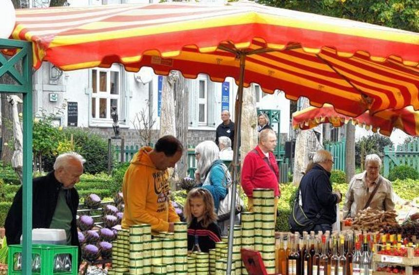 Gut besucht war der Herbstmarkt samt Ausstellung rund um die Villa Meixner. Doris Schäfer, die noch ...