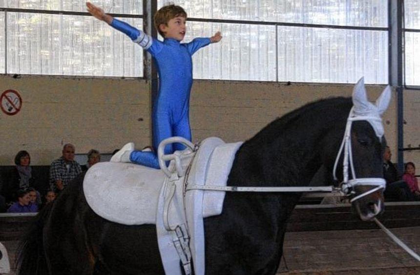 Routine auf dem Rücken des Pferdes: Schon der sportliche Nachwuchs macht beim Voltigier-Turnier des ...